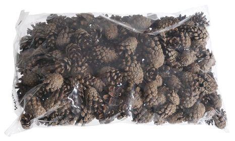 Borovicové šišky Sylvestris 100g