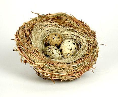 Dekoračné hniezdo s vajíčkami
